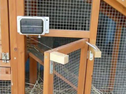 Une Porte Automatique de Poulailler DIY post thumbnail image